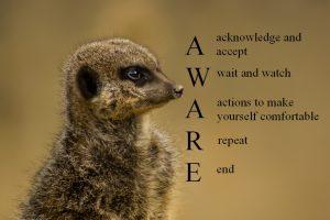 AWAREtext